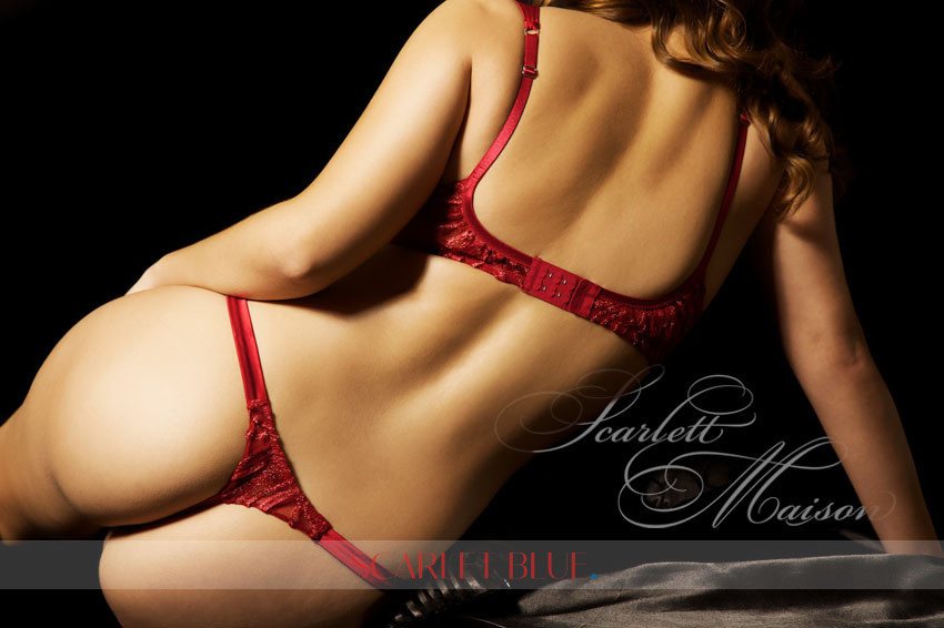 holly harlow escort ava escort
