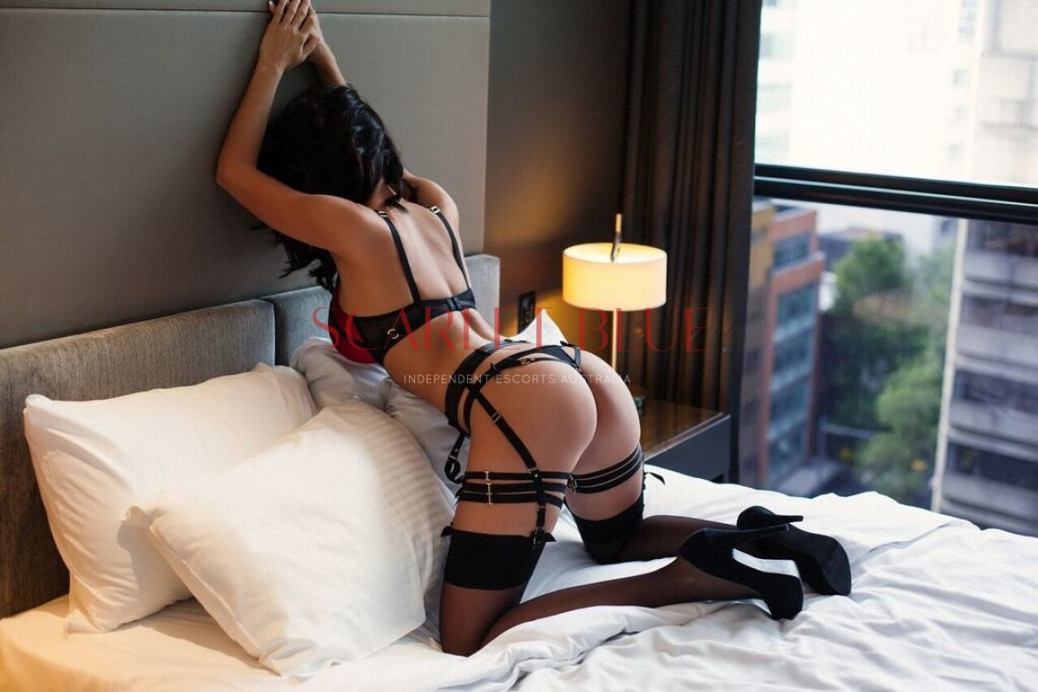 Vanessa Love  - Private Escort Australia wide